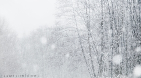 STORY ABOUT A SNOWFALL